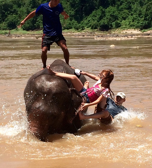 large_Laos_ElephantSplash.jpg