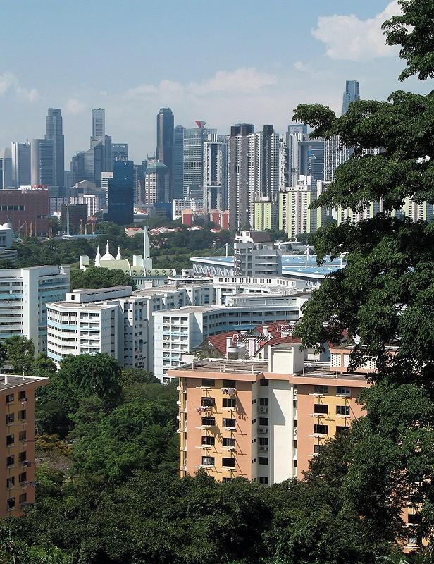 large_Singapore_CanopyView1.jpg