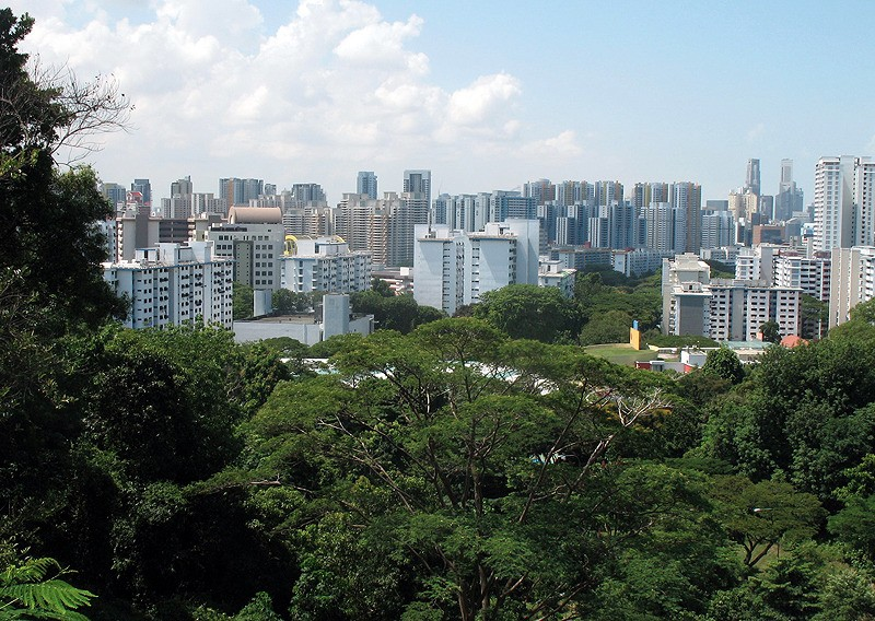 large_Singapore_CanopyView2.jpg