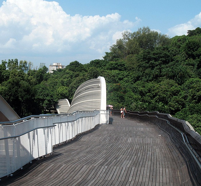 large_Singapore_CanopyWalkwaySurface.jpg