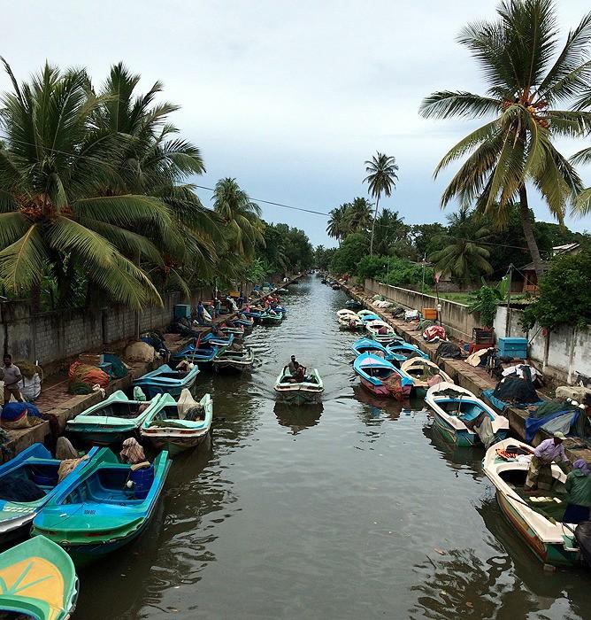 large_SriLanka_CanalBoats.jpg