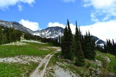Summer hiking trails