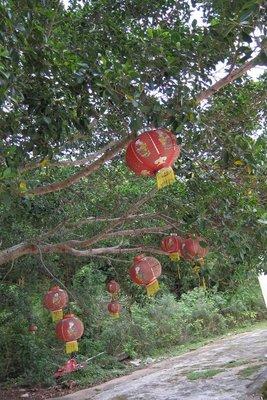 荔枝窩村 燈籠