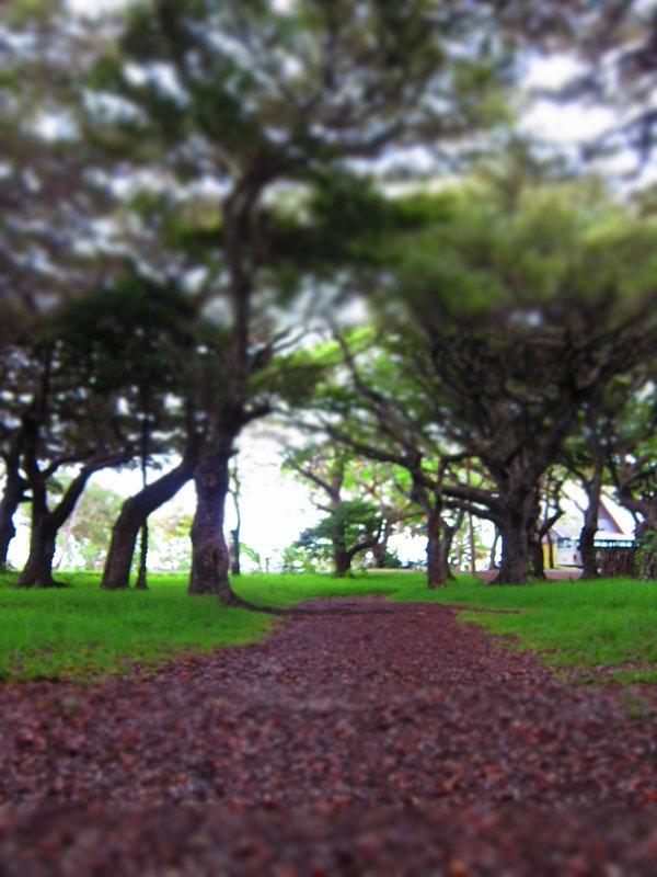 Path to Kuto