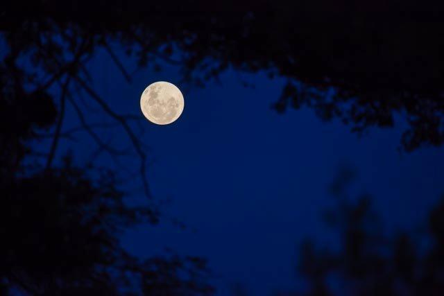 Moonlight During Sundowners