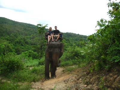 Elephant Ride to Village
