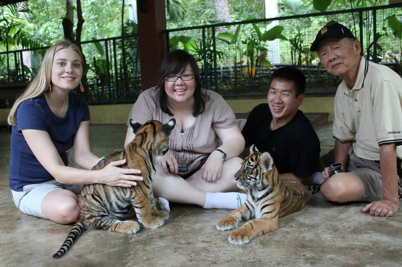 family with the tigers