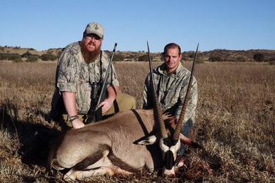 Kelly's Gemsbok