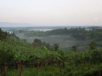 Drive from Kibale to Bwindi (3)