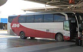 ADO_bus.jpg
