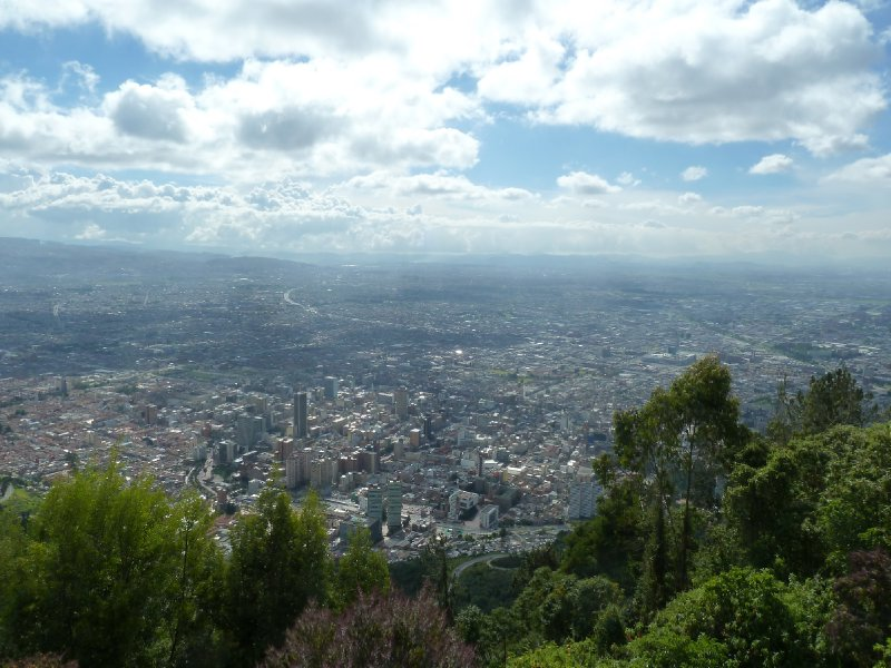 large_Bogota_Roland___7_.jpg