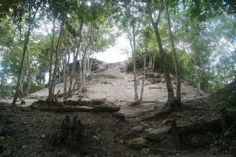 El Mirador (107)