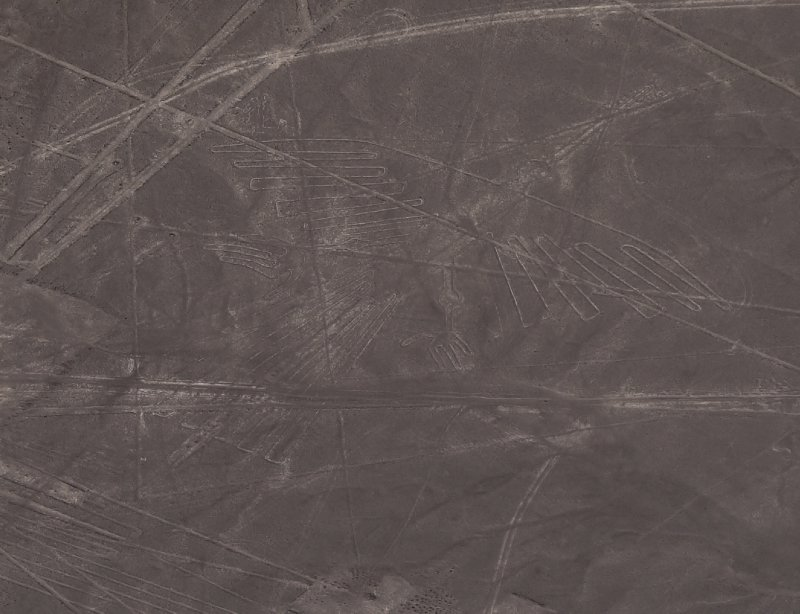 Nazca lines - Colibri