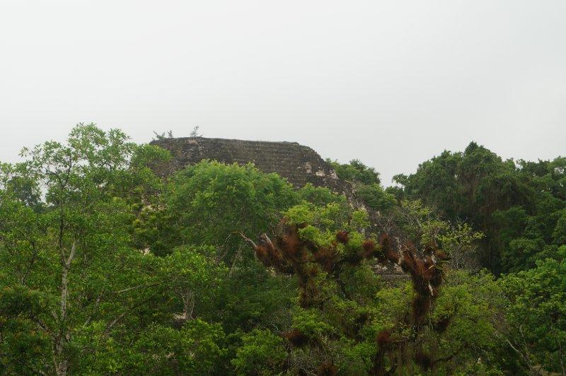 large_Tikal_ruins__48_.jpg