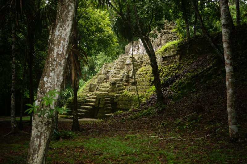 large_Tikal_ruins__56_.jpg