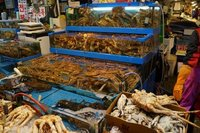 Fish market (1)
