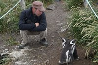 Penguins (67)