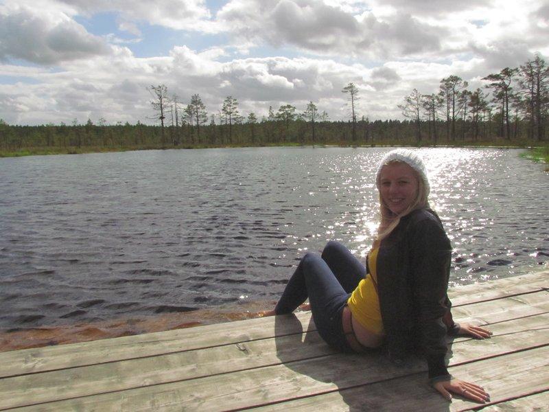 swamp in lahemaa national park