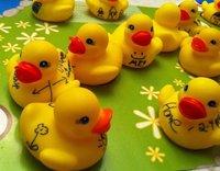 duckie_kit.jpg