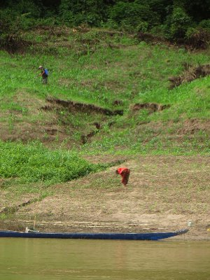 Farming the banks of the Mekong