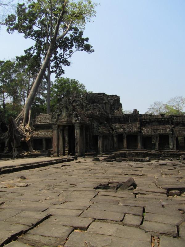 large_SiemReap_AngkorWatt_9.jpg