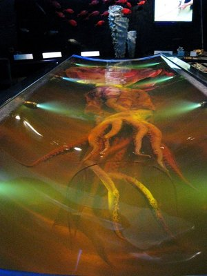 Colossal squid at the Te Papa museum in Wellington