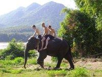 Elephant trekking in Laos