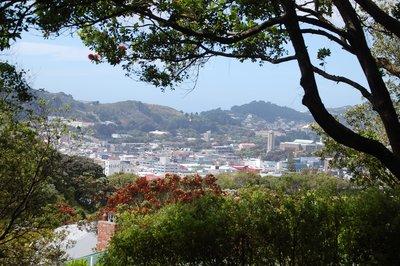 Wellington..ot_Gdns.jpg