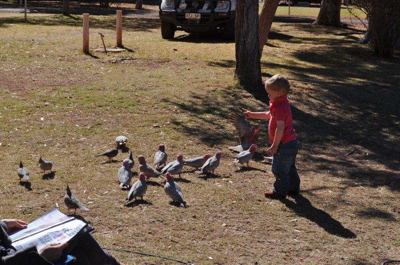 Mack feeding the 'ducks'