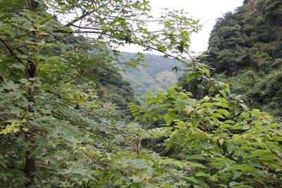 Picture Tian Tai Shan Mountain