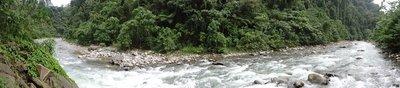 bukit lawang back to nature guesthouse indonesia sumatra
