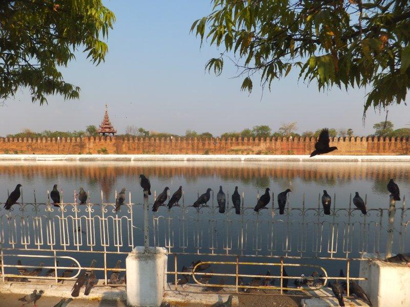Mandalay Moat and Palace