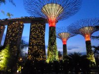 The Garden by the Bay