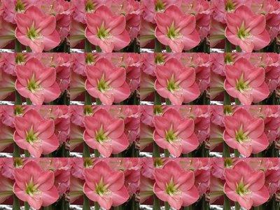 April_2007_350.jpg