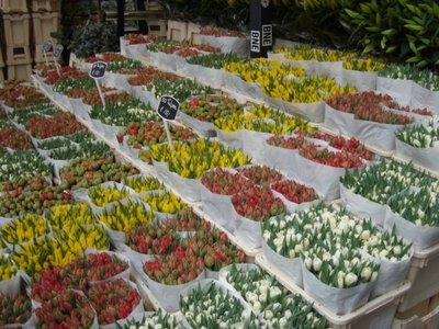 April_2007_389.jpg