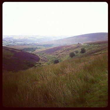 The top of Exmoor