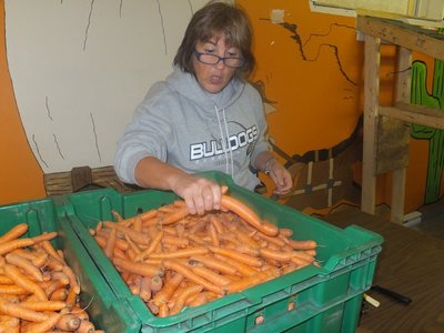 So Many Carrots to Clean