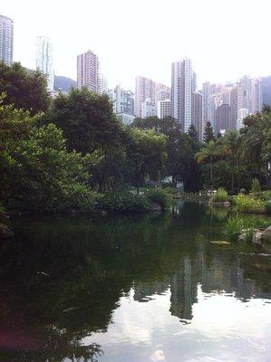 Artifical lake in Hong Kong Park