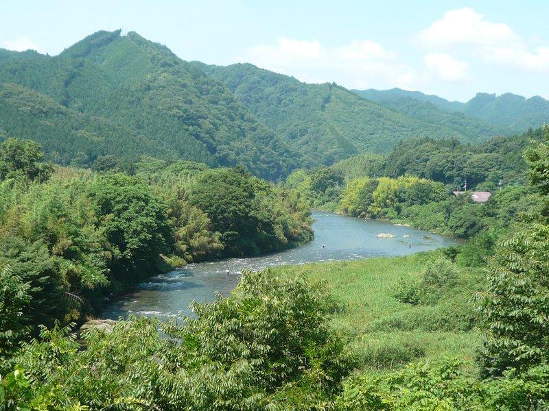 large_Kenai_Lake_has_Bamboo.jpg
