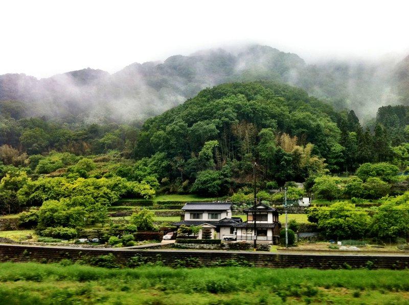 large_Mid_May_2013_Saijo_136.jpg