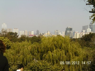 View of Yantai from the zoo