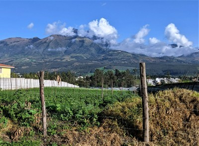 View of Mama Cotacachi and Small Finca