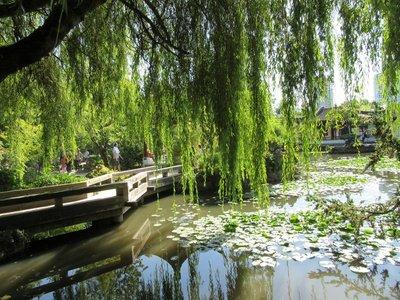 Reflections Sun Yat Sen Public Park