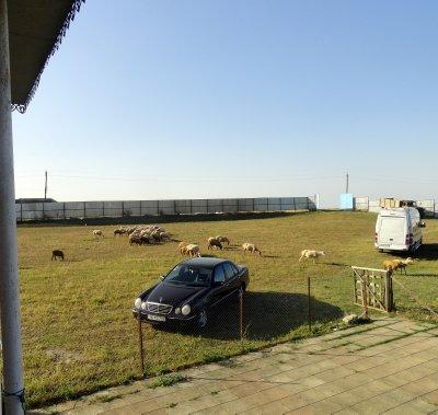 Village Gullatapa Country House Yard