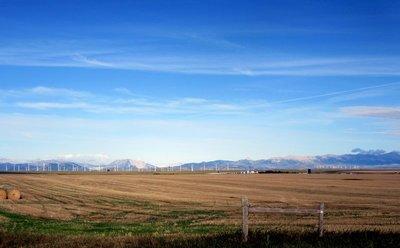 Wind Farm and Farm Farm