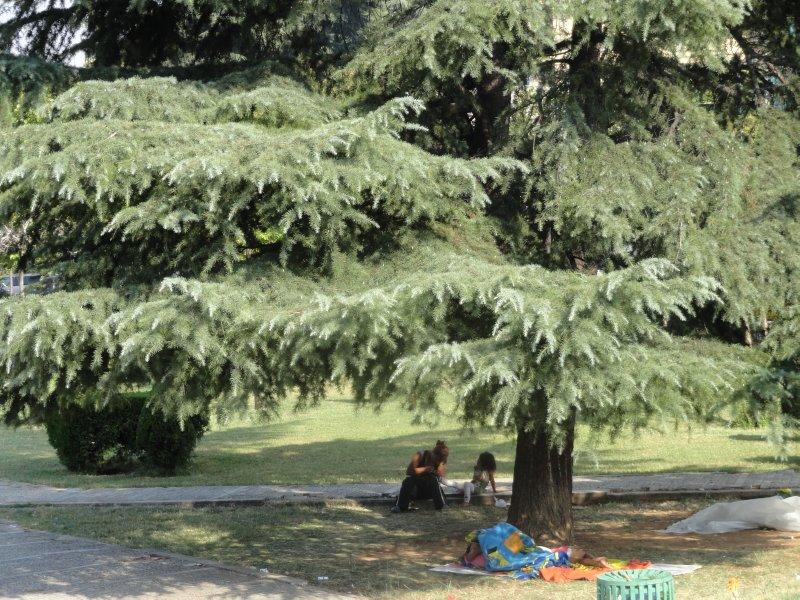 Homeless_f..yramid_park.jpg