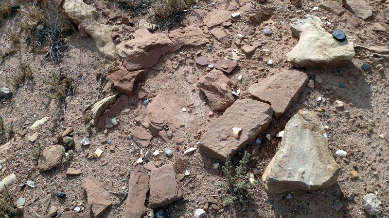 Homolovi Remains