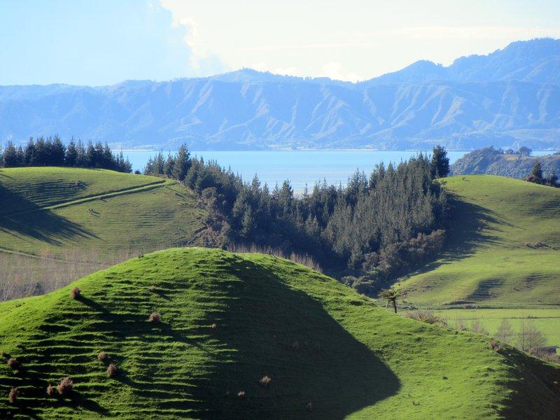 Looking Over Tasman Bay