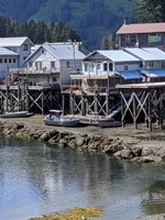 Salmon and Boats Wait for High Tide
