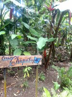 Sign for My Casita